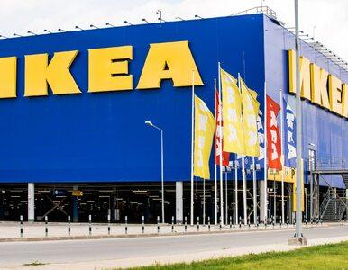 Zakupy w IKEI tylko dla zaszczepionych? To fake news