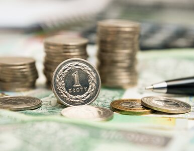 Walka z mafią VAT-owską mało skuteczna i utrudnia życie także uczciwym przedsiębiorcom